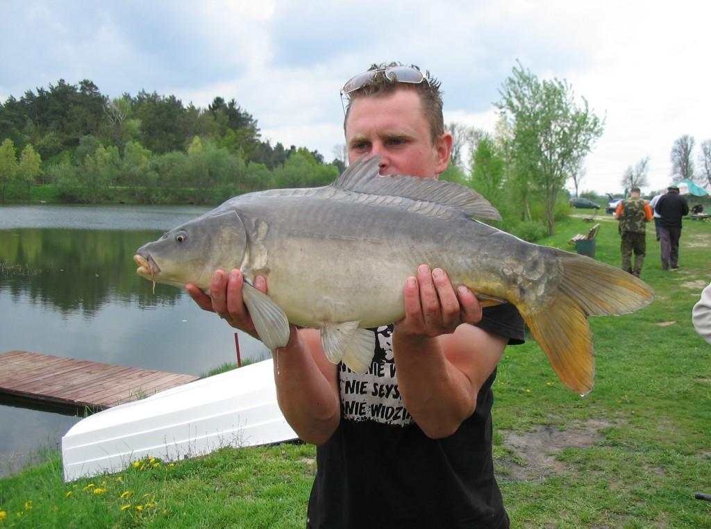 Dawid karp 7,9 kg 78 cm